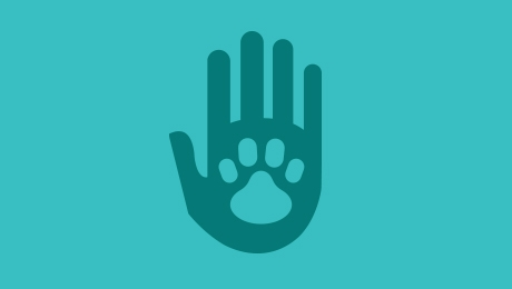 Blue hand and paw logo