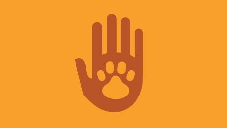 Orange paw and hand icon