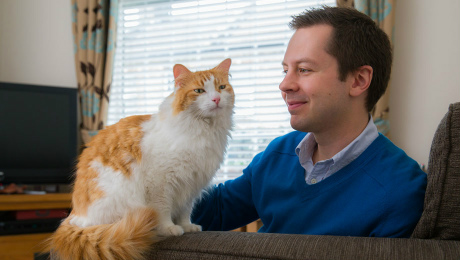 Man sitting with white and ginger cat