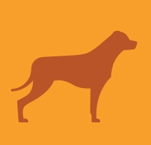Large dog icon