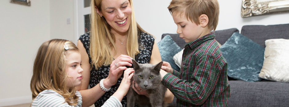 Cat being stroked by children