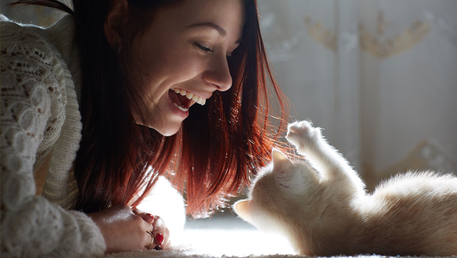 Lady smiling and laughing at white fluffy kitten