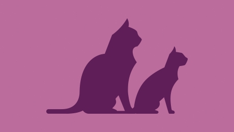 Two purple cats icon
