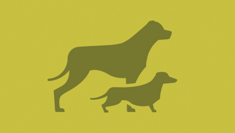 Two green dogs logo