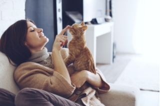 woman touching ginger cat on nose affectionately
