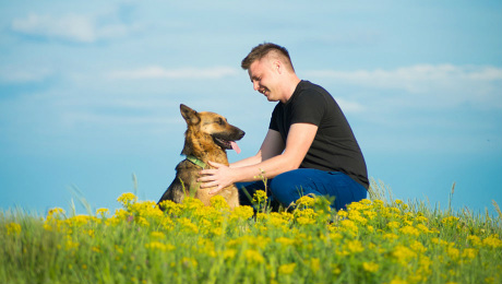 Owner with dog in flower field