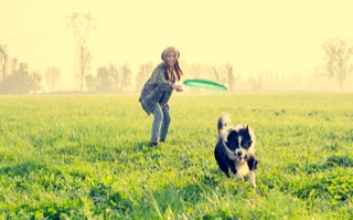 Woman throwing frisbee to dog in field