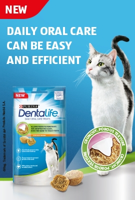 Dentalife cat treat banner
