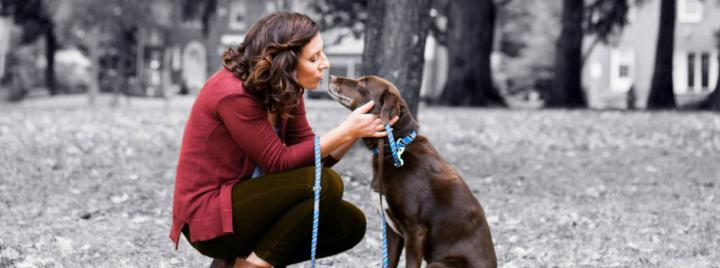 Woman crouched next to brown labrador