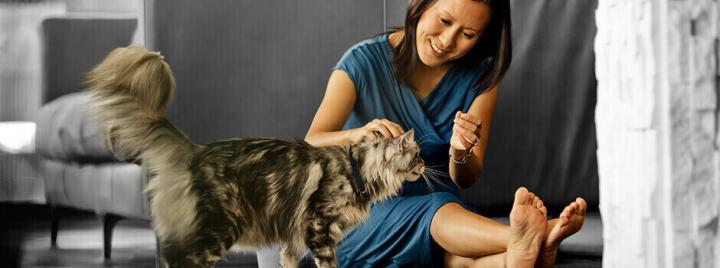 Keeping you and your pet healthy