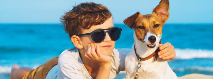 Dog at the beach with boy